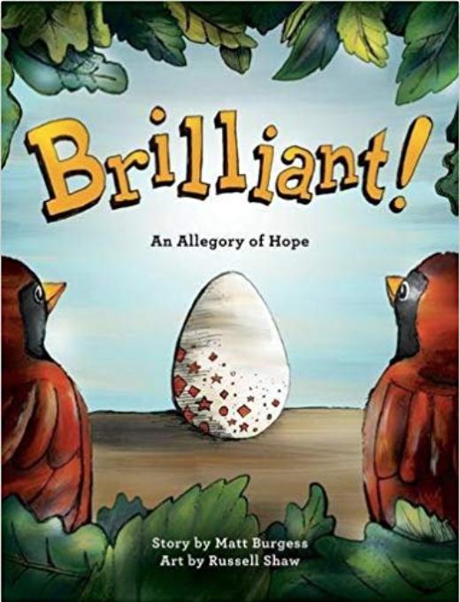 Ad brilliant book