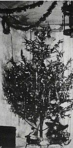 Christmastreefirst